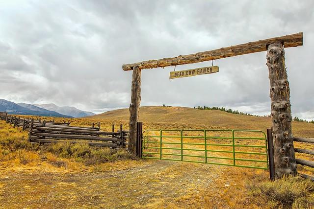 Dead Cow Ranch