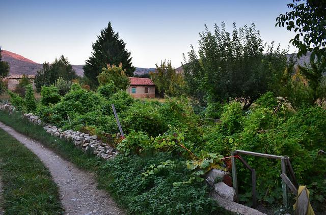 Evening Countryside Walk