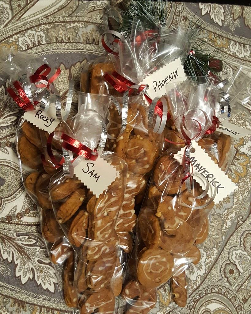 homemade peanut butter pumpkin dog cookies
