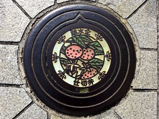 Omishima Ehime, manhole cover 2 (愛媛県大三島町のマンホール2)
