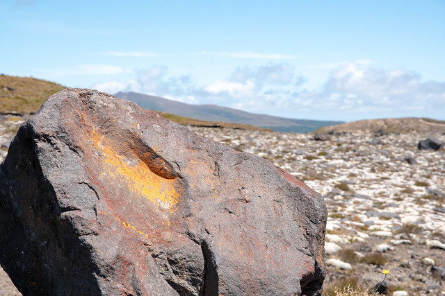 Large boulder sitting on a volcanic landscape in the central plateau of NZ