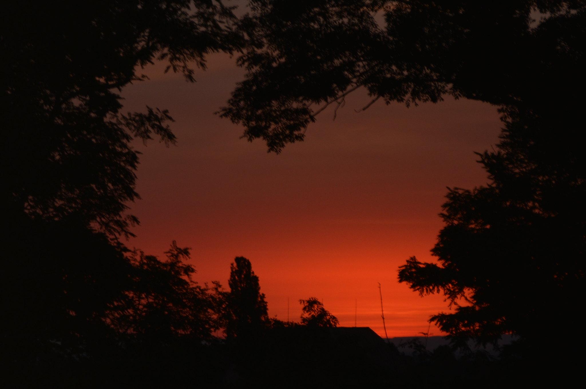 Heart Sunrise <3