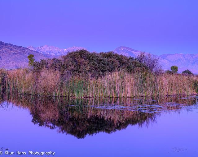 USA, California, Eastern Sierra . Pre Dawn_