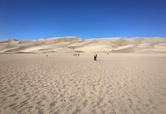 Journey Across the Sand