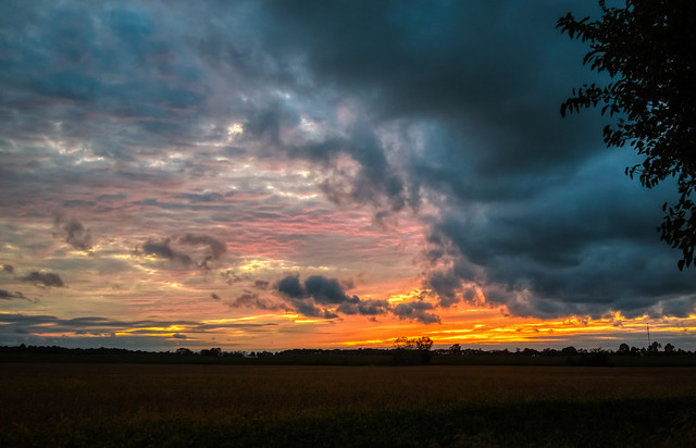 October Sky (4)