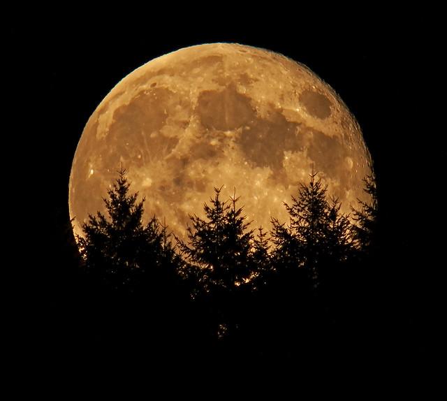 Moonrise Aug. 2, 2012