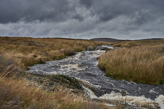 Afon Conwy (in explore)