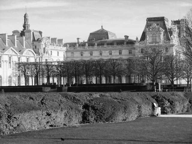 La poubelle ouverte et le corbeau vagabond, jardin du Carrousel, Paris