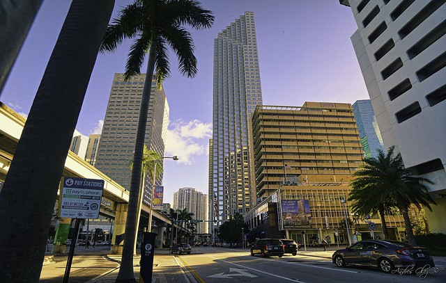 An afternoon of Biscayne boulevard.