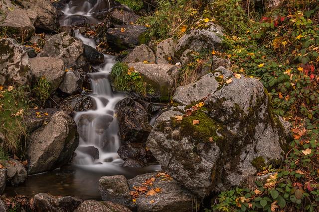 Todtnauer Wasserfall im Herbst