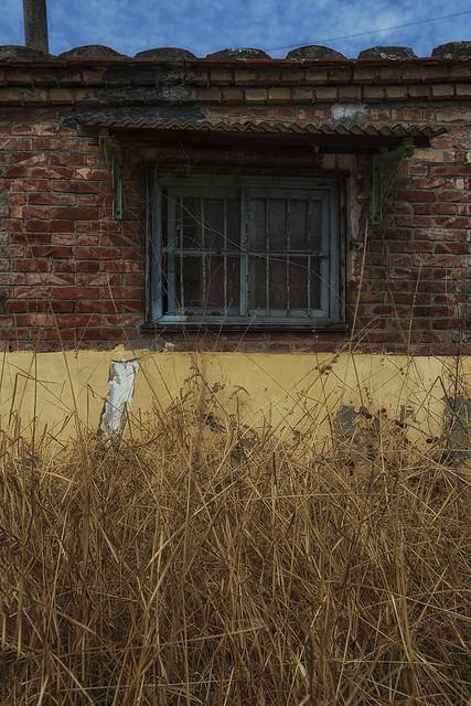 靈魂の窗~~#60
