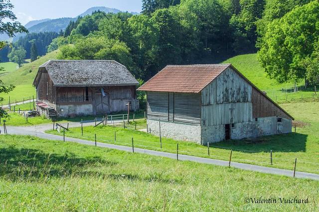SF-_MG_1429 - Les Albergiaux, old barn, Gruyère region - Switzerland