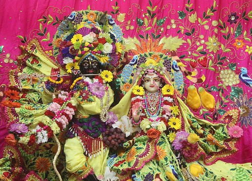 ISKCON Seattle Deity Darshan 11 Oct 2019