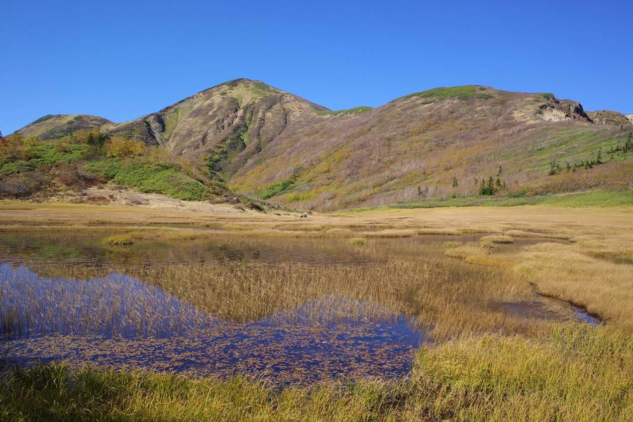 火打山と湿原の草紅葉