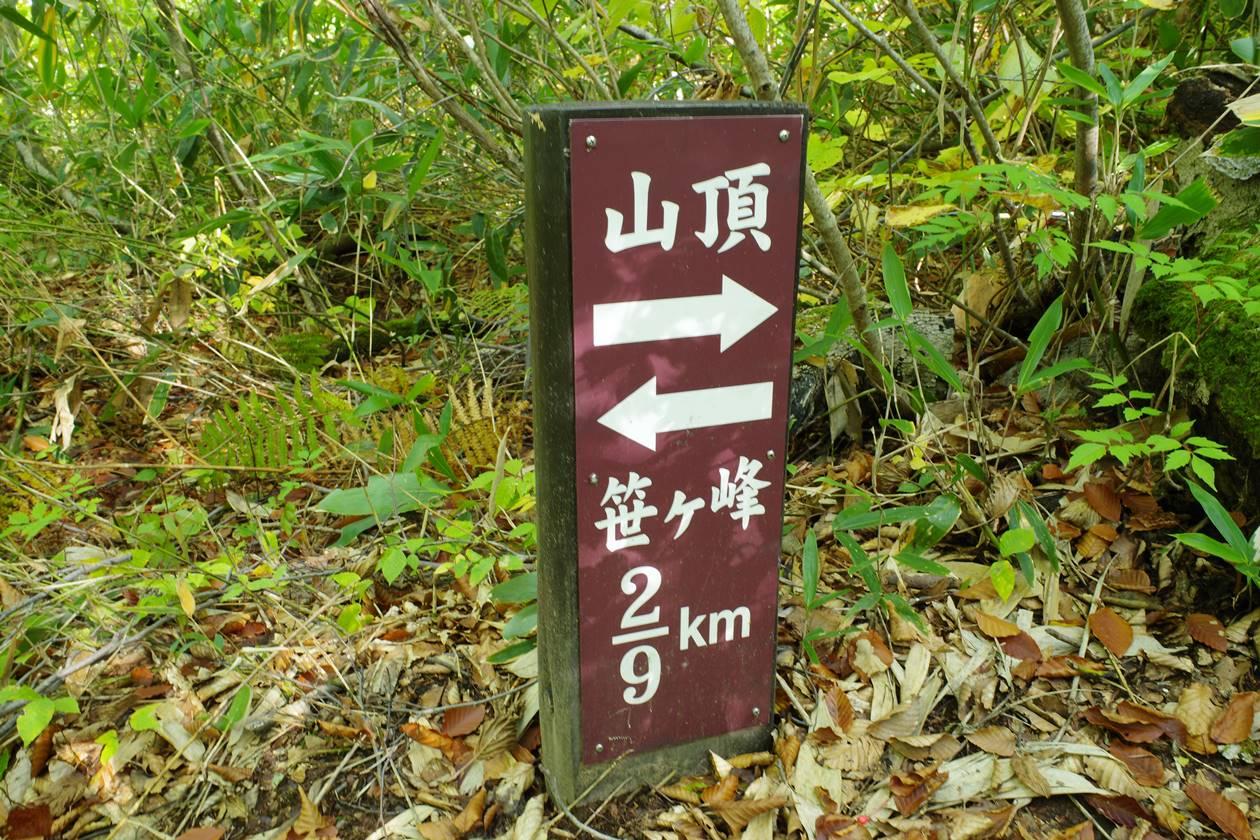 笹ヶ峰から山頂まで2/9地点