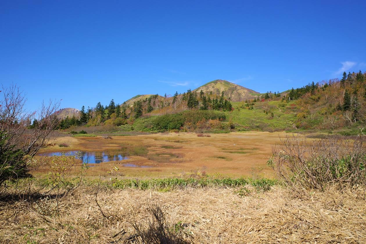 高谷池の草紅葉