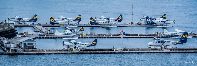 2019 - HAL Alaska Cruise - 3 - Harbour Air in Coal Harbour