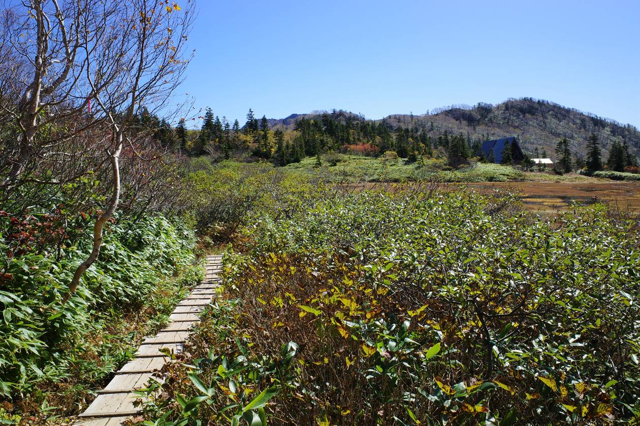 高谷池の木道路