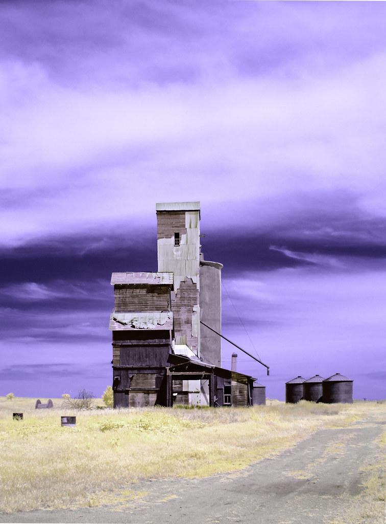 Willard Grain Elevator