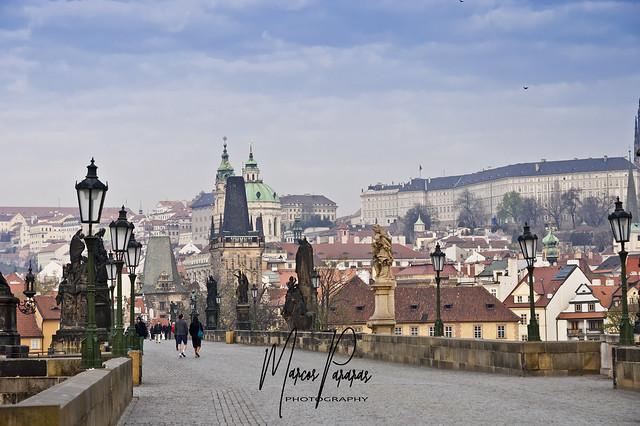 The Prague Collection