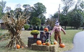 Scarecrow 2019