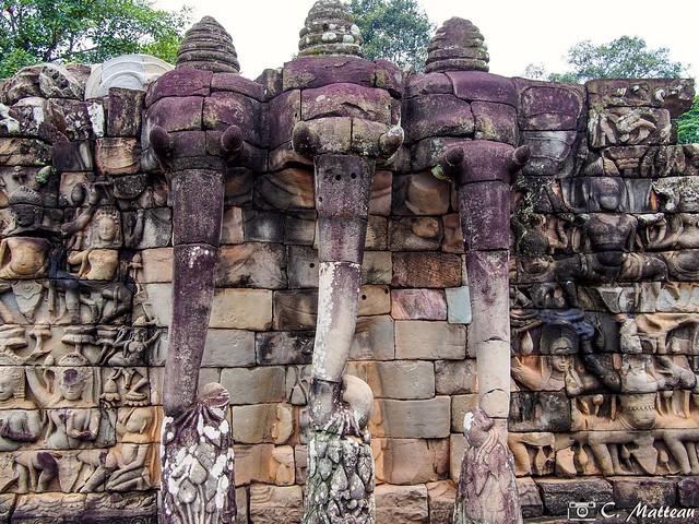 180727-133 Elephant Terrace (2018 Trip)