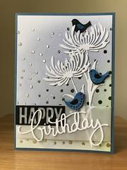 Happy birthday w/birds