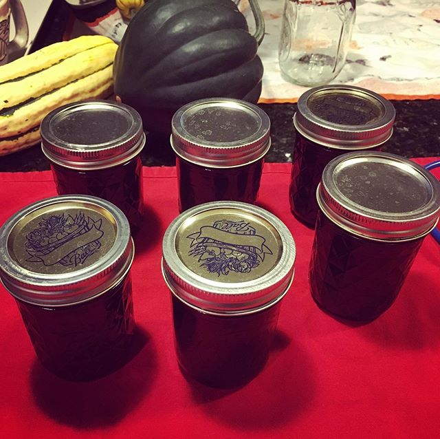 6 half pints of grape jam. A bucket of grapes in the fridge will be turned into juice tomorrow. 🍇🍇🍇🍇🍇🍇