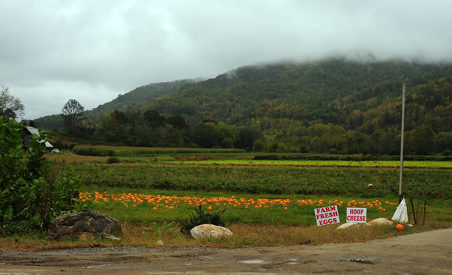 Pumpkins, Hoop Cheese and Farm Fresh Eggs - North Carolina