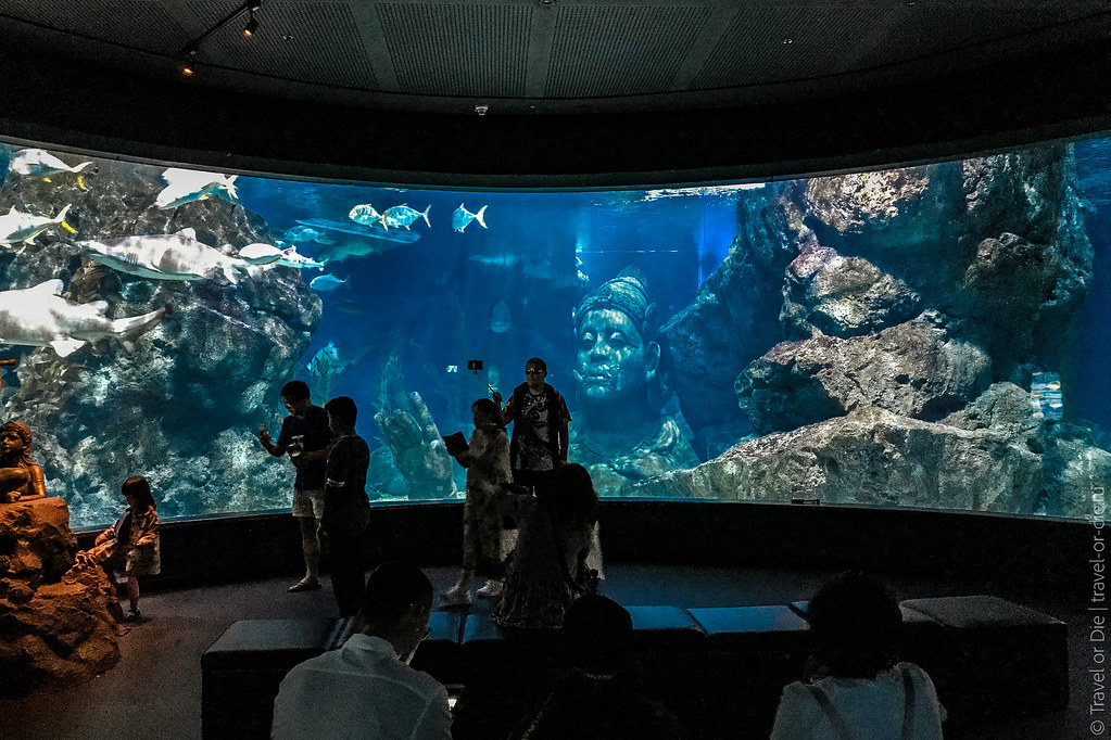 SEA-LIFE-Bangkok-Ocean-World-9380