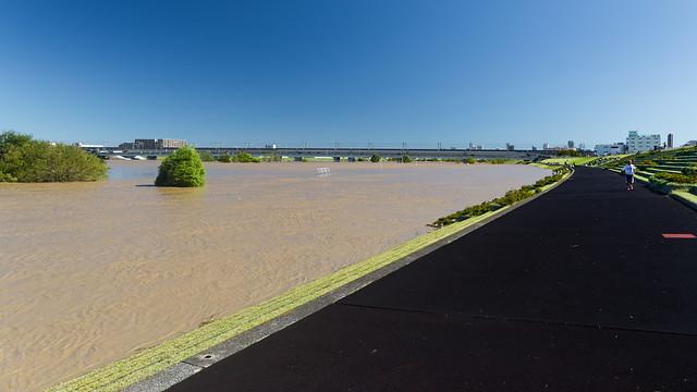 The Arakawa after typhoon Hagibis #2