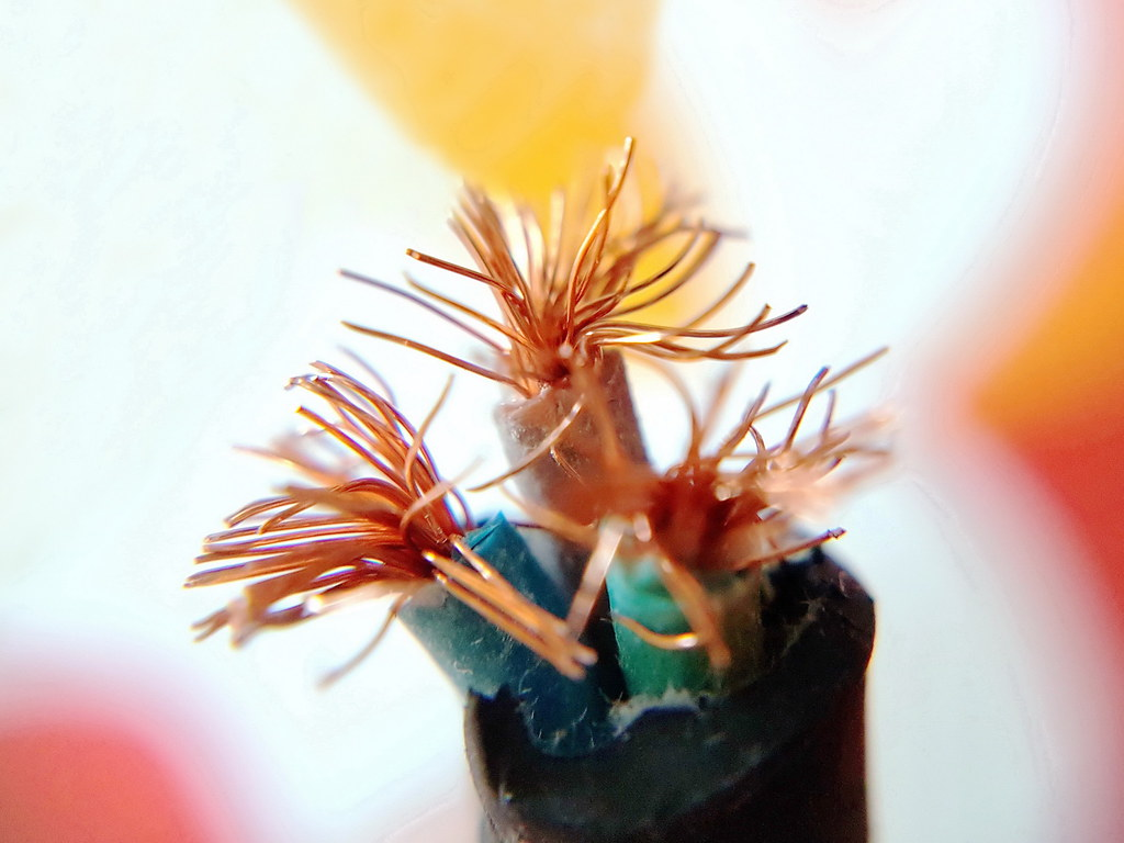 Electric Wire Flowers