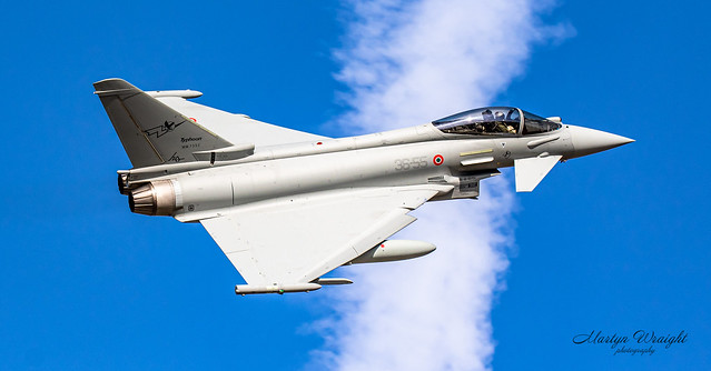 Italian Air Force EF2000 (36 Stormo Wing).