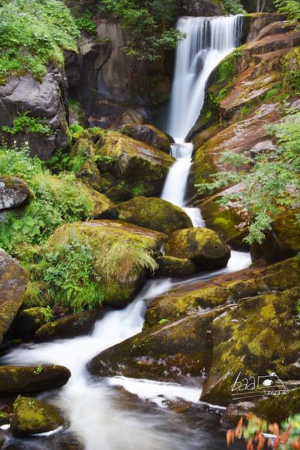 Triberg Cataratas