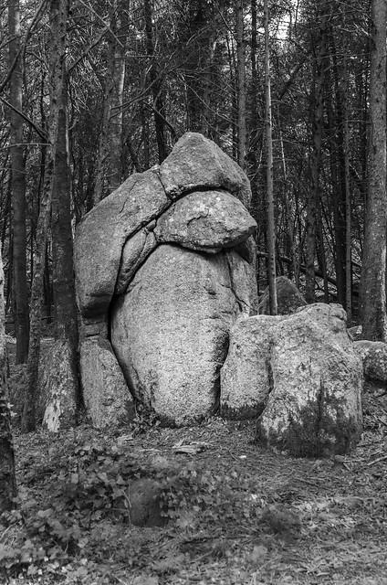 Rock 2473