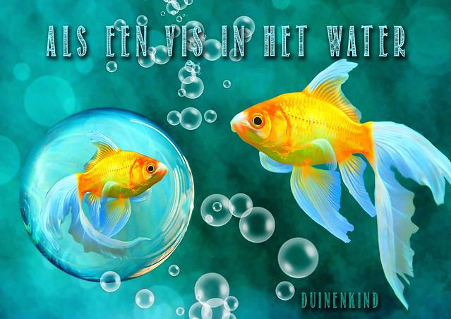 Als een vis in het water - toneeltje