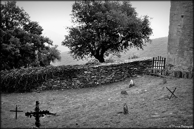 Dans le petit cimetière du prieuré de Serrabone