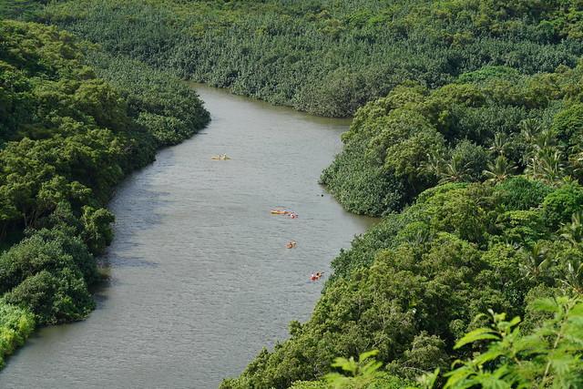 Kayakers on Wailua River, Kauai