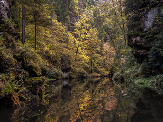 Autumn reflection - Herbstliche Spiegelung