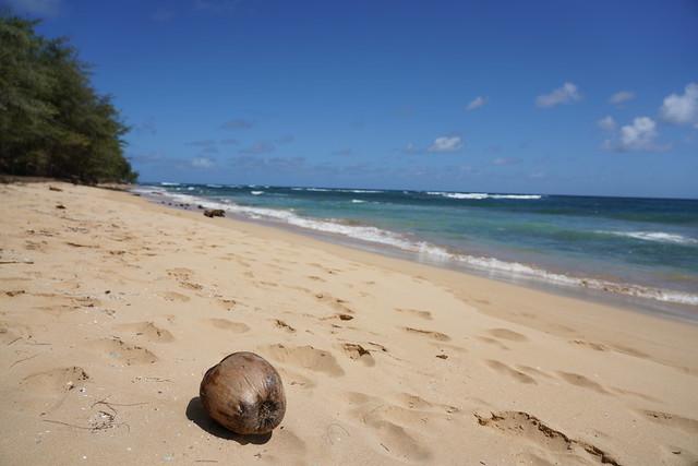 Remote Beach in Kauai