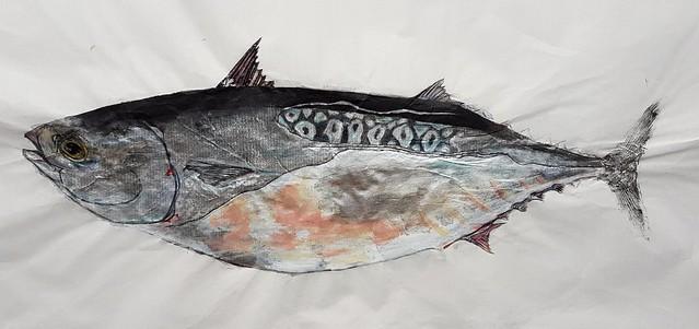Bonita Tuna