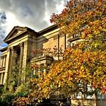 Autumn colours in Preston - Avenham Institute