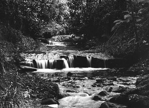 blackandwhite monochrome analogue mediumformat mamiya acros rural northeast landscape