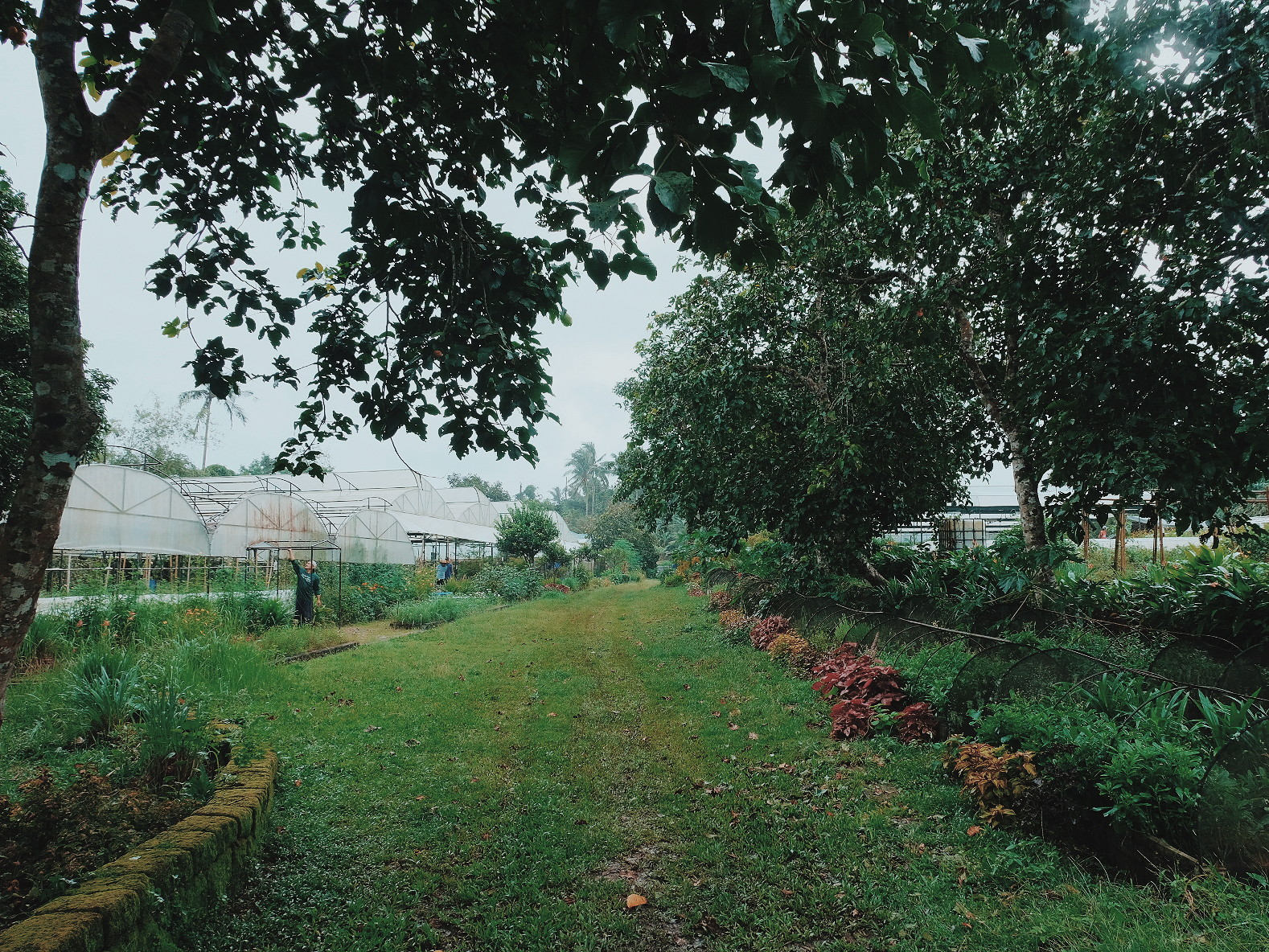 Sanctuario Nature Farms