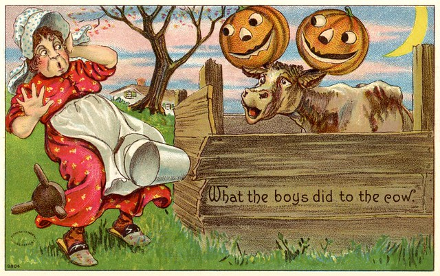 Halloween Mischief—What the Boys Did to the Cow