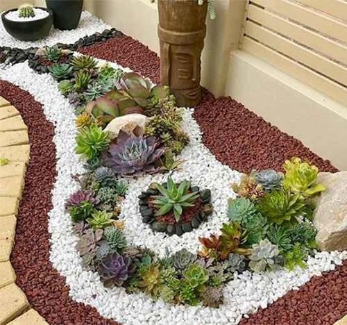 Come realizzare il tuo giardino roccioso con piante grasse e pietre