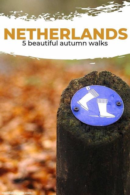 The most beautiful Dutch autumn walks | Your Dutch Guide