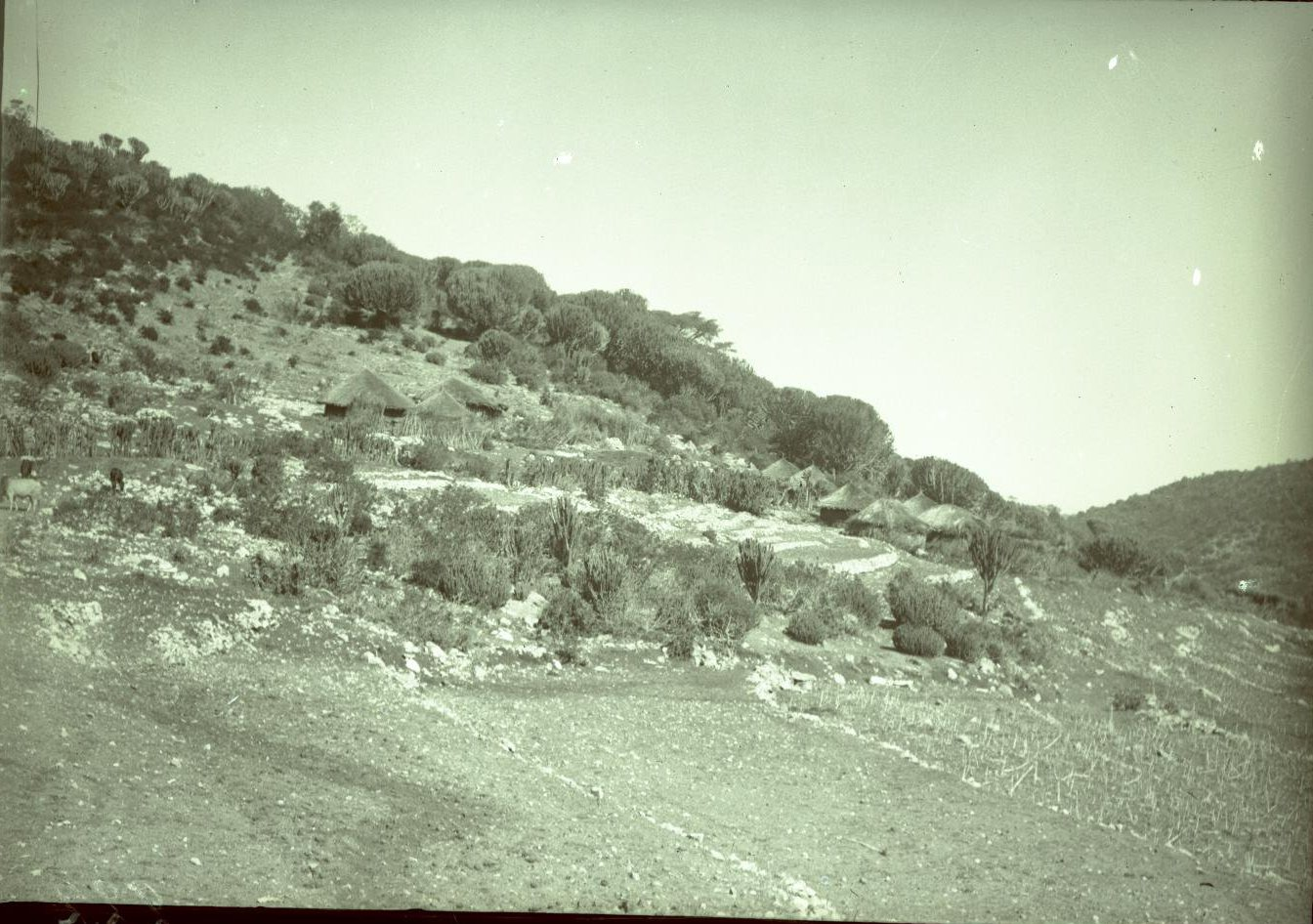 222. Гильдесса. Вид Беляуа (селение у горы)