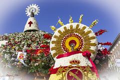 Fiestas Pilar 2019