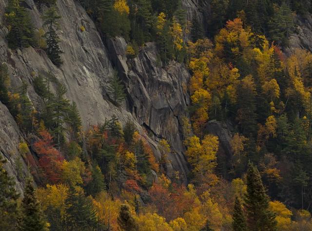 Couleurs d'automne au Mont Tremblant